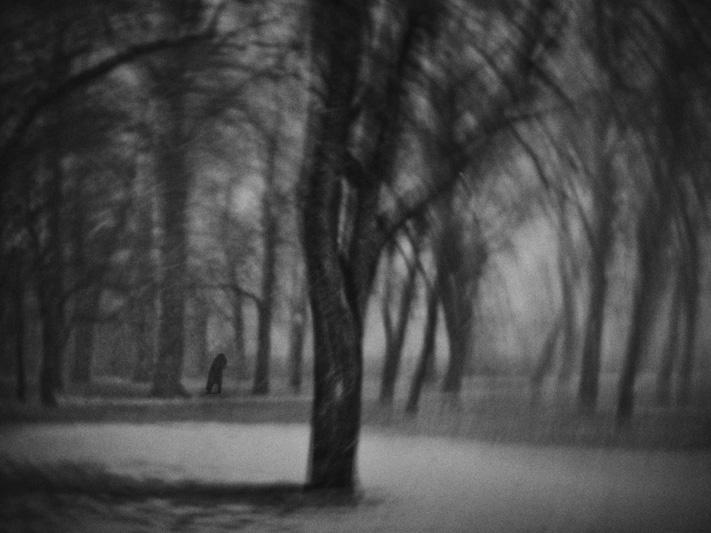 IMG_6798_walking_NY
